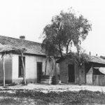 How and Where We Lived in Early Scottsdale